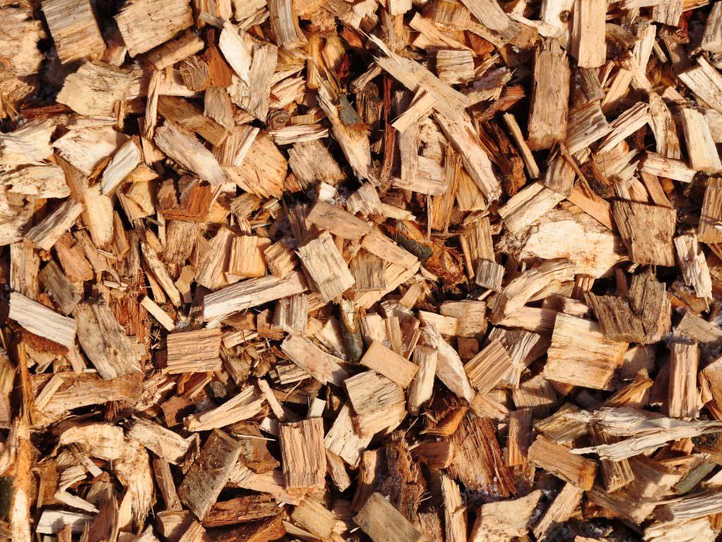 wood chip close up